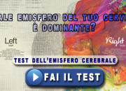 Test dell'emisfero cerebrale